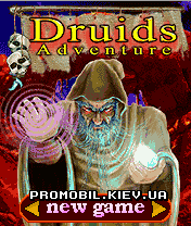 java игра приключения друида 128x128 samsung sgh x100