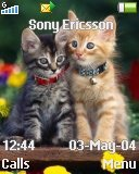 Тема для Sony Ericsson 128x160 - Cute Kitties