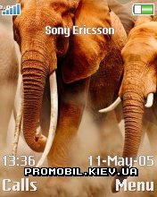 Тема для Sony Ericsson 176x220 - Animals