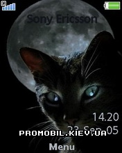 Тема для Sony Ericsson 240x320 - Black Cat