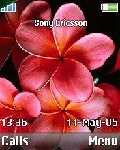 Тема для Sony Ericsson 176x220 - Lovely Flower