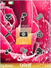 Тема для Nokia Series 40 - Rose